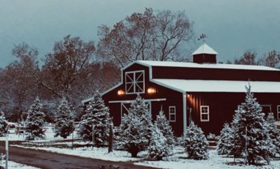 This Texas Christmas Tree Farm is the Perfect Backdrop for Family Photos