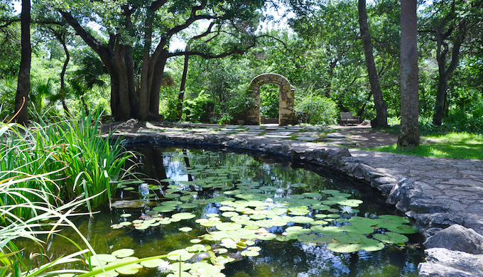 Austin S Mayfield Park Offers Wild Experience