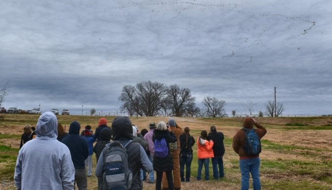 Visit East Fork Wetland Project: Water, Wildlife, and Family Legacy