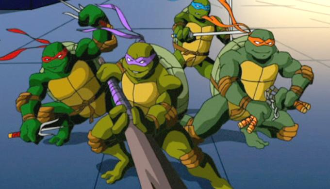 Day of the Ninja Ninja Turtles