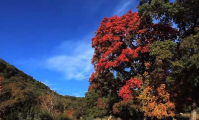 Leakey in the Fall: Texas Hill Country Beauty That's Yet Unsurpassed