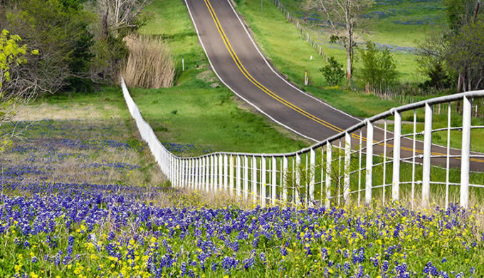 Driving the Hill Country by Leena Robinson