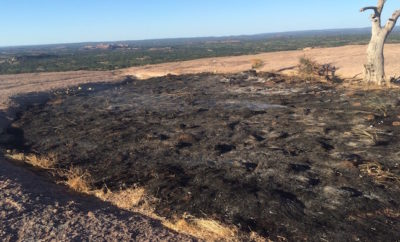 Vernal Pool Fire at Enchanted Rock Poses Questions of Arson