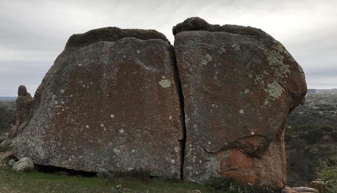 ERSNA Lichen Covered Rock
