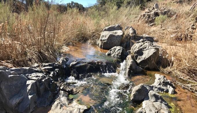ERSNA Sandy Creek Flow