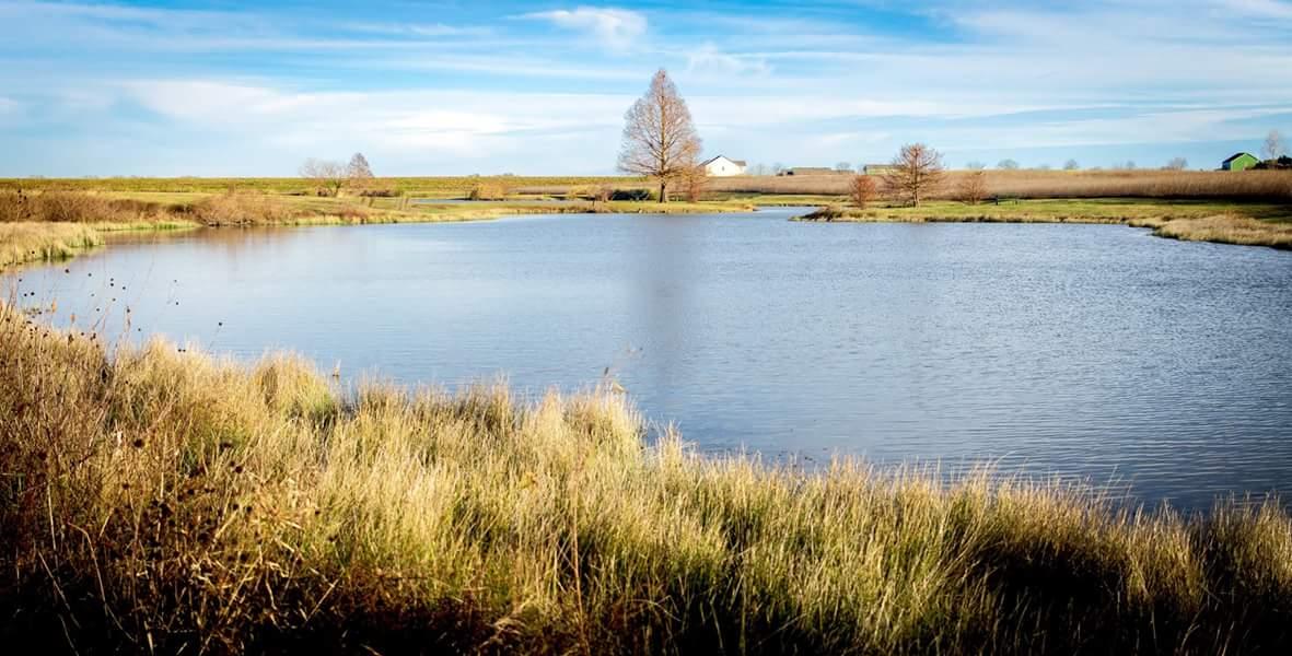 Lake Kyle