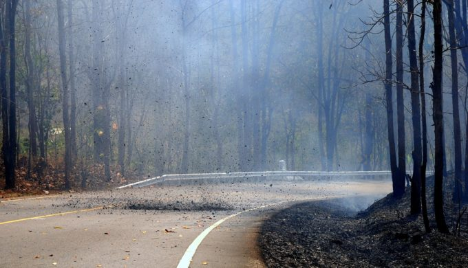 Risk for Texas Wildfires is High: Minimize & Mitigate Where Possible