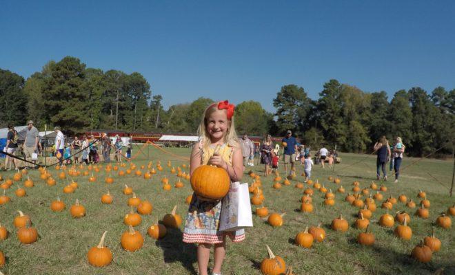 All Aboard for Pumpkin Patch Train Rides: Fall Fun in Texas
