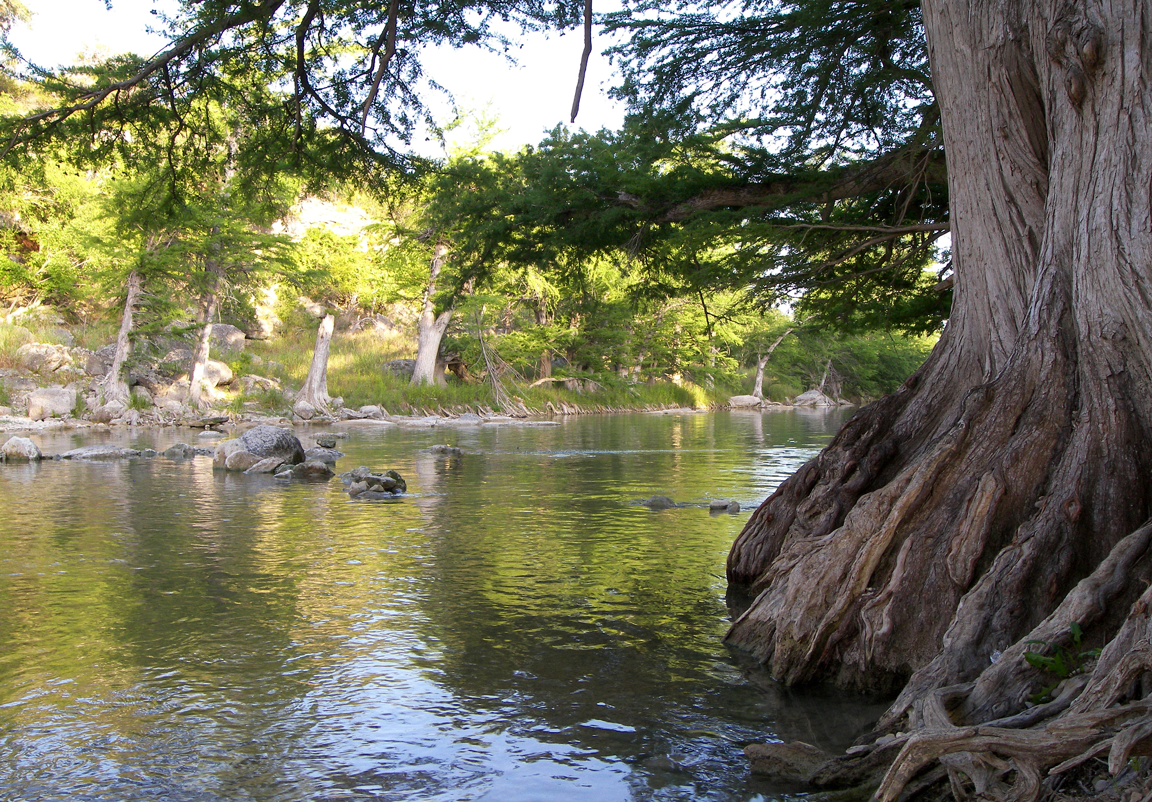 3 Amazing Texas State Parks to Visit This Year