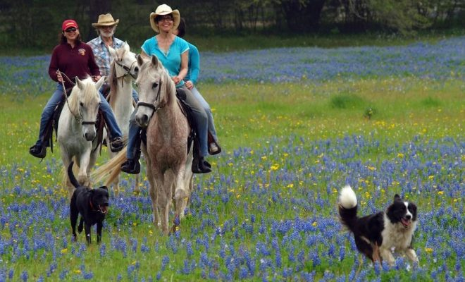 5 Beautiful, Relaxing Hill Country Getaways to Refresh Your Body & Soul
