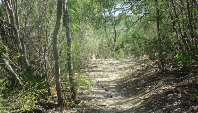 Hiking trail in Castroville, Texas. Watch out for rattlesnakes.