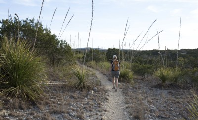 Hill Country State Natural Area Hiking