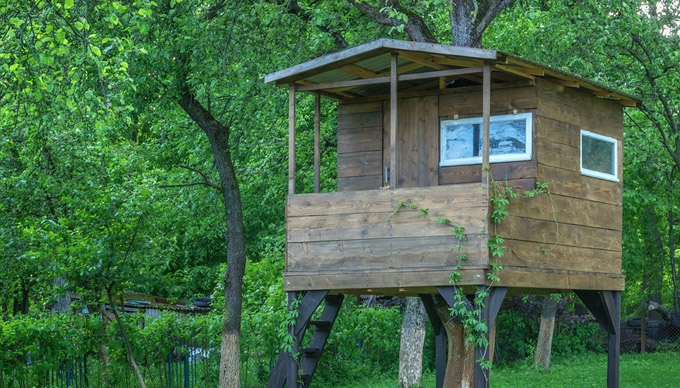 How to Build a Tree House for Your Kids
