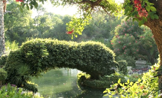 Texas hill country for Japanese tea garden hours