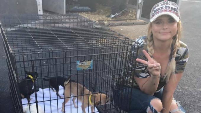 Lambert with pups