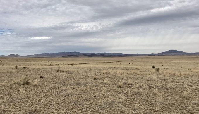 Mimms Ranch Marfa