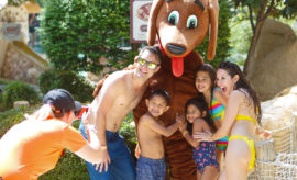 Spring Break Adventures in New Braunfels the Whole Family Will Enjoy