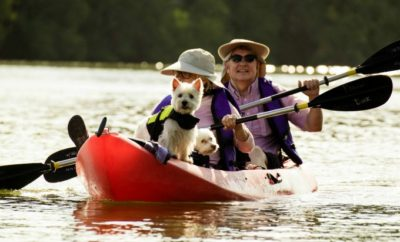 Paddling for Pups