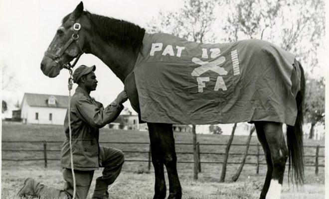 Pat the Horse: Beloved Cavalry Horse has His Own Hill Country Memorial