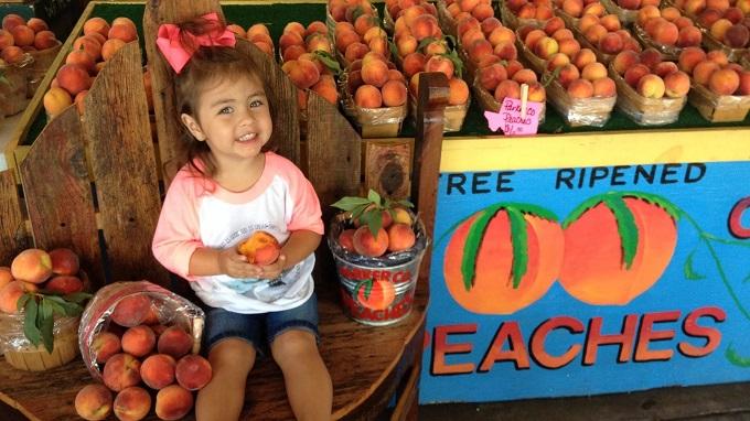 Peach Festival 2