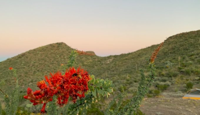 What's YOUR Big Bend Story? Explore Real Texas Beauty
