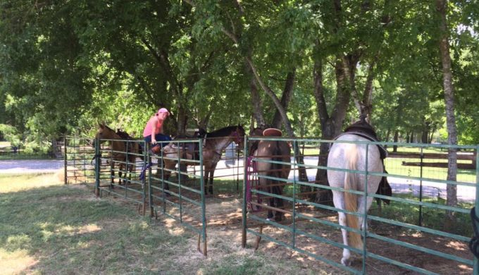 Rent a horse from Bandera Historical Rides for the equestrian trails in Hill Country State Natural Area