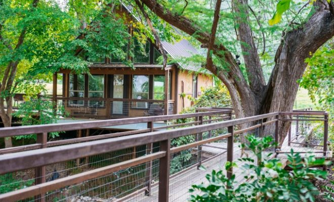 Sleep Among The Trees At River Road Treehouses