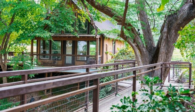 River Road Treehouses