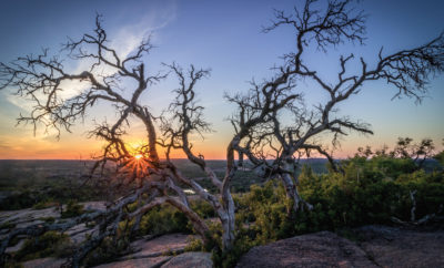 Russ Tomlinson Enchanted_Rock_Tree_Sunset