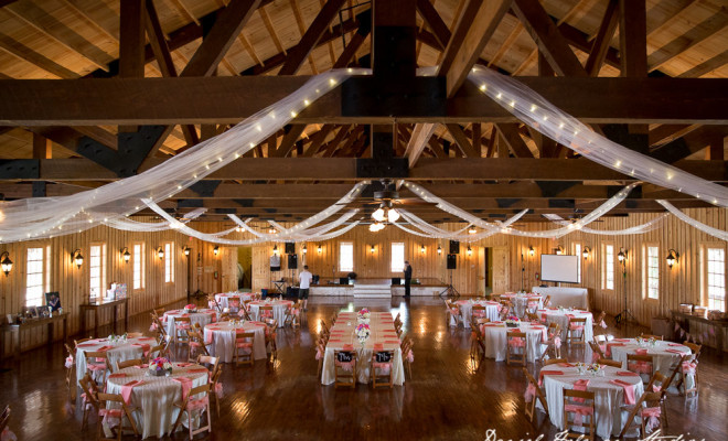 The Ultimate Cheat Sheet To Save Money On Your Hill Country Wedding
