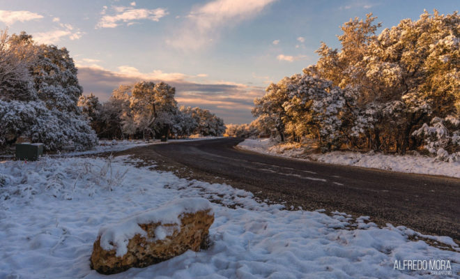 San Antonio Snow by Alfredo Mora