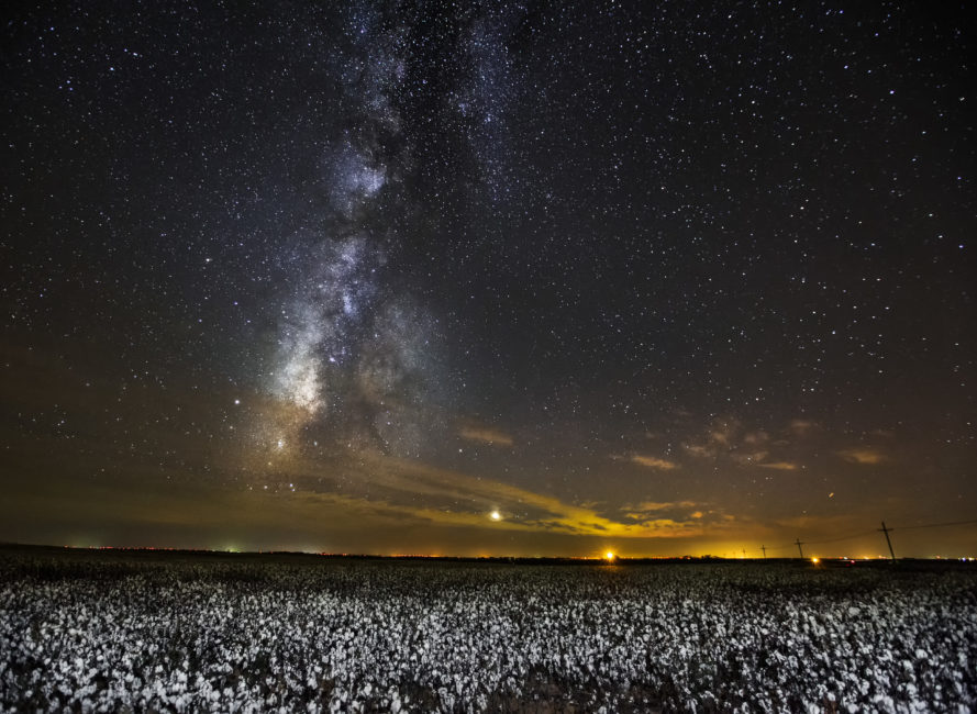 The Milky Way over a cotton field outside of Colorado City