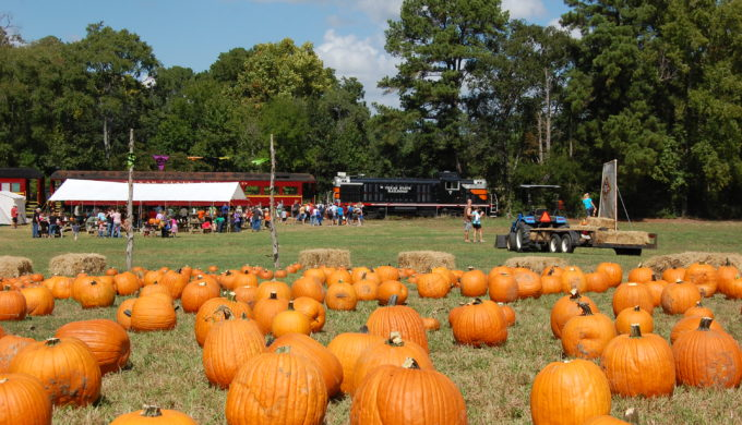 All Aboard for Pumpkin Patch Train Rides: Fall Fun in Texas