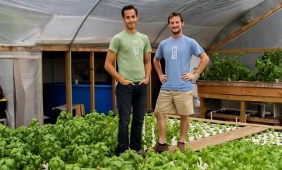 Ten Acre Organics
