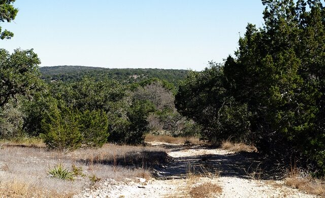 Texas Hill Country State Natural Area features many miles of undeveloped trails