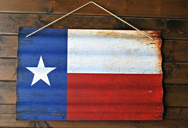 10. What year did Texas adopt the Lone Star flag?