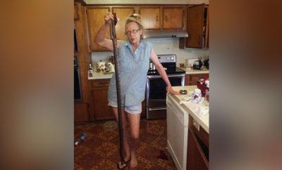 Tough Texan Woman Battles Big Snakes in Her Kitchen