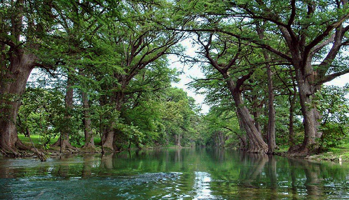The Sabinal River