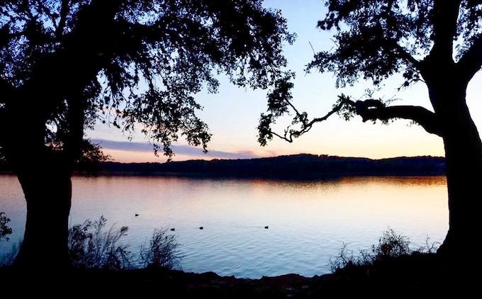 Tori Bellos - PCred-Amanda Spencer-Tree silhouette at Boerne Lake