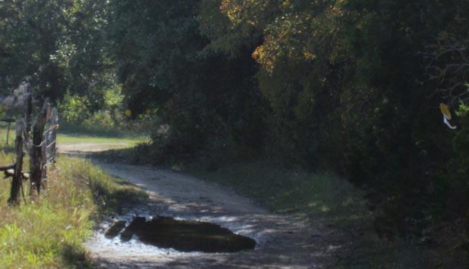 Treasure Hunting on Horseback – The Hill Country Way