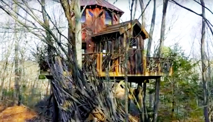This luxurious treehouse tells story of 100 year family legacy
