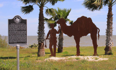 US Camel Corps Historical Marker for the Great Camel Experiment