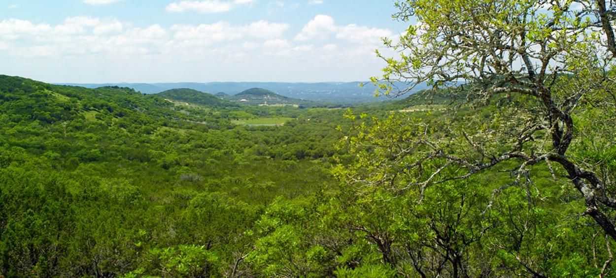 Uvalde Texas