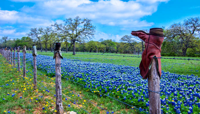 5 Texas Hill Country Spring Break Destinations