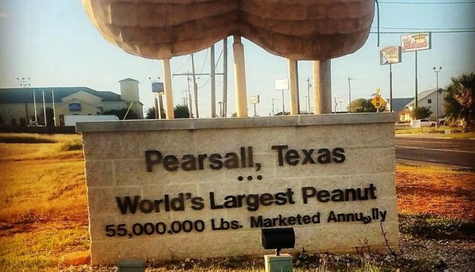 worlds-largest-peanut