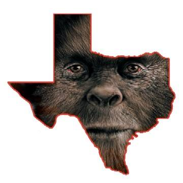 Spotted in Your Hometown? View a Map of Alleged Texas Bigfoot Sightings