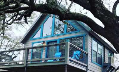 Arbor House of Dripping Springs: A Hill Country Tree House Heaven