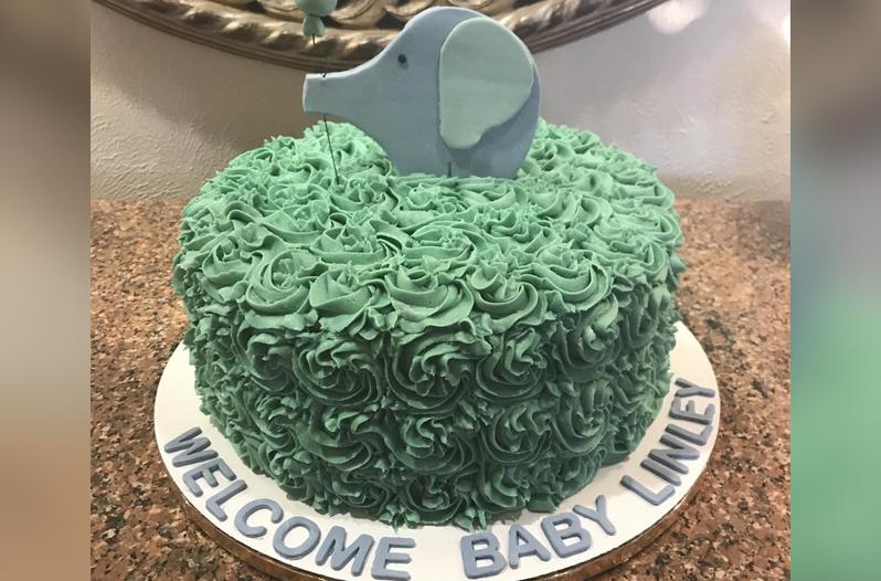 Wilton Cake Decorating Classes Houston