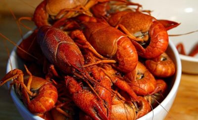 East Texas Crawfish Season is Here Y'all! Get it While it's Hot