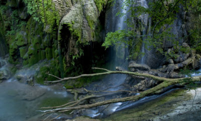 5 Amazing Reasons to Visit Colorado Bend State Park